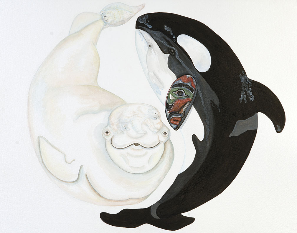 yin yang orca and beluga